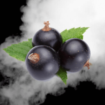 Blackcurrant e-Liquid Elite Liquid