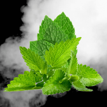 Mint Blast e-Liquid from Elite Liquid